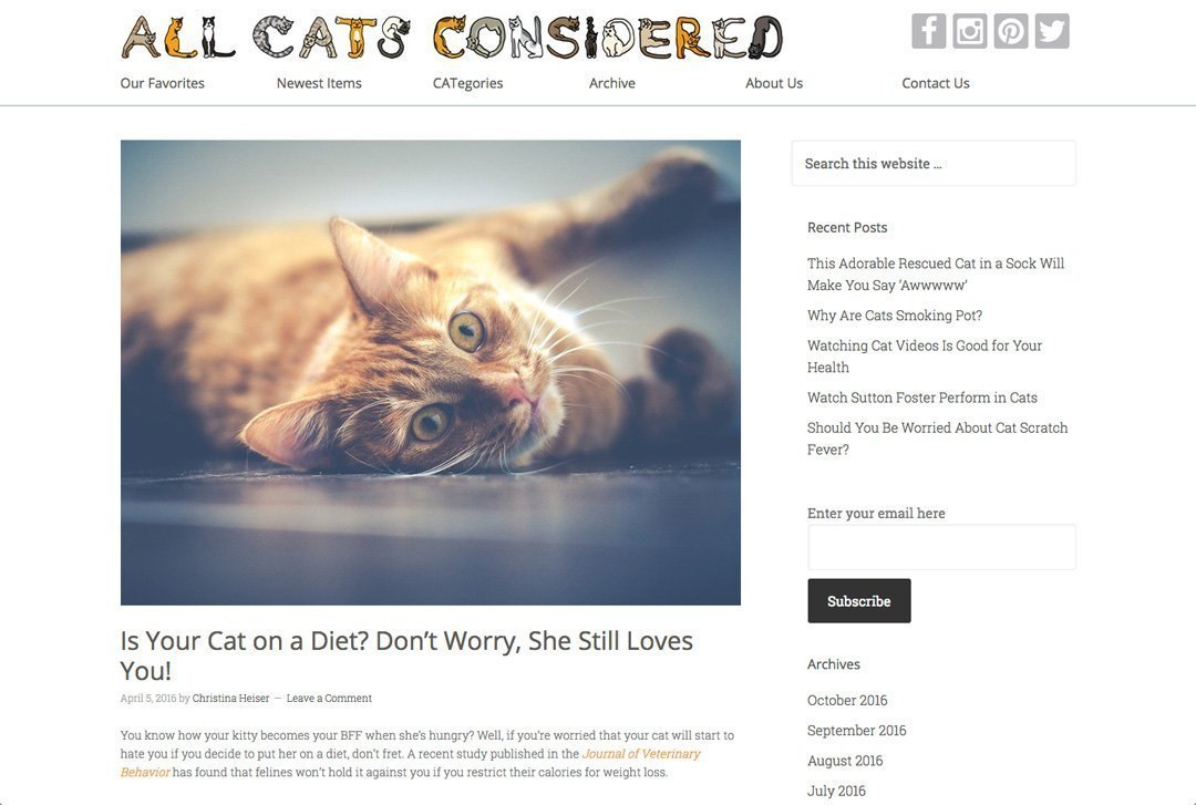 All Cats Considered website post